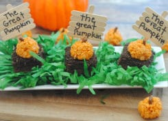 These easy, pumpkin patch Halloween Treats are perfect for class parties!